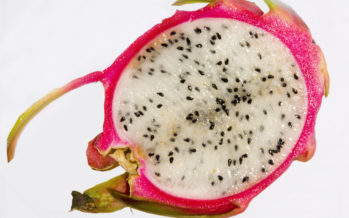 Why you should try Pitaya (commonly known as dragonfruit) + VIDEOS