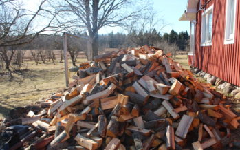 The firewood, nice weather and gardening have arrived