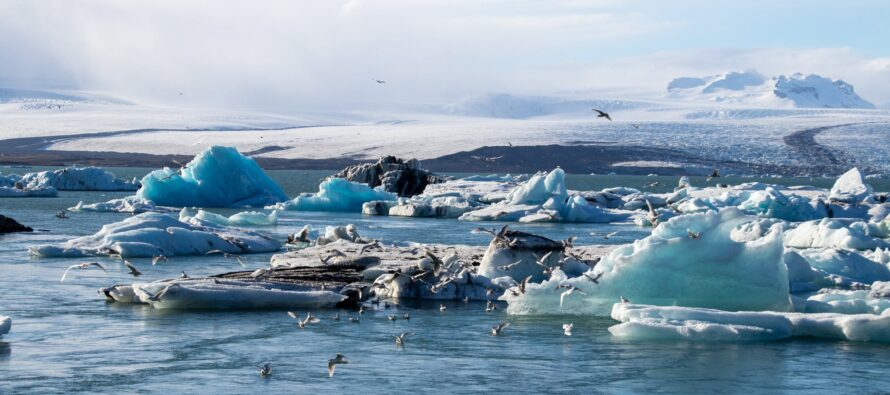 In Focus: Iceland and the Arctic