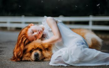 STUDY: Sleeping with your DOG in bed ensures better sleep